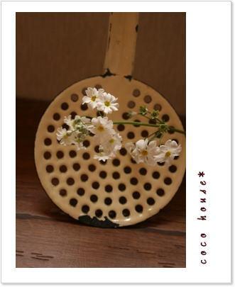 雑貨と花*