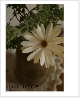 花を飾る*