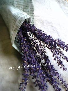 青紫の花*
