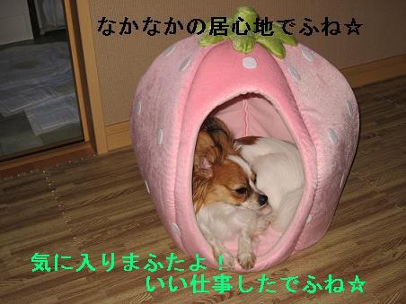 IMG_1692.jpg