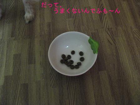 IMG_2224.jpg
