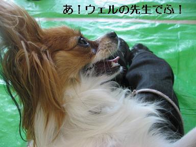 IMG_2880.jpg