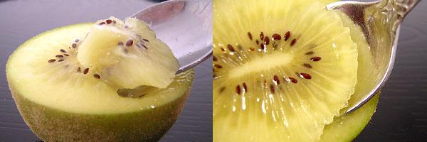 kiwi-img02.jpg