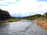 偶然通りかかった川