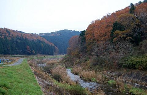 紅葉の風景巴川にかかる橋から