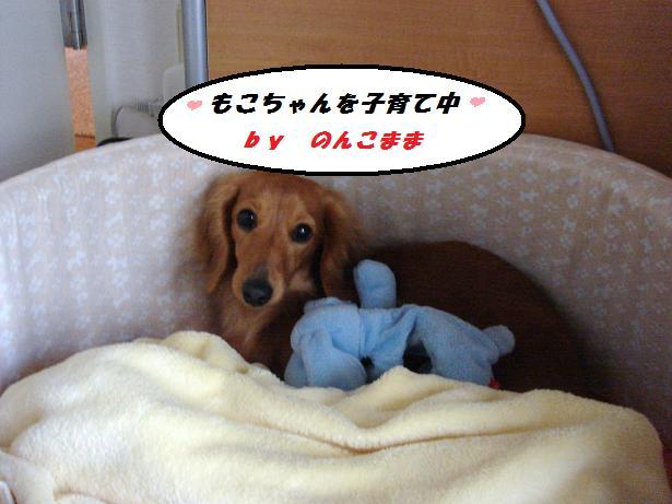 ブログ (2)
