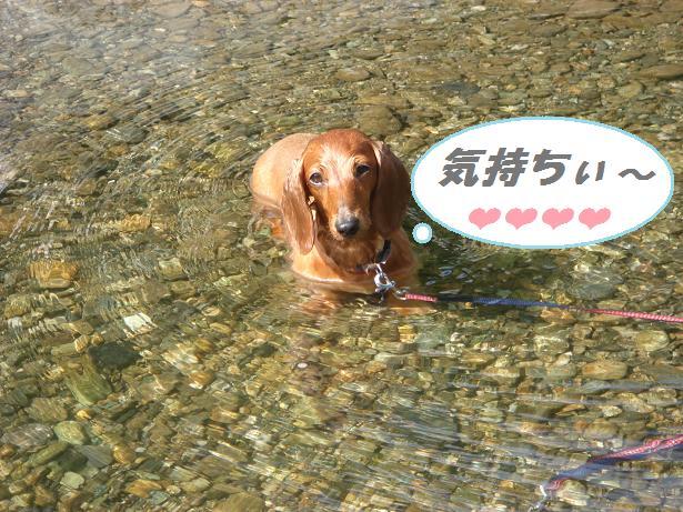 川遊び 3