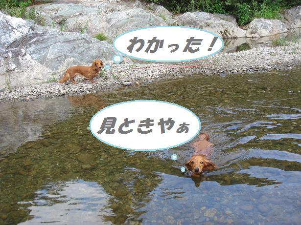 川遊び 5