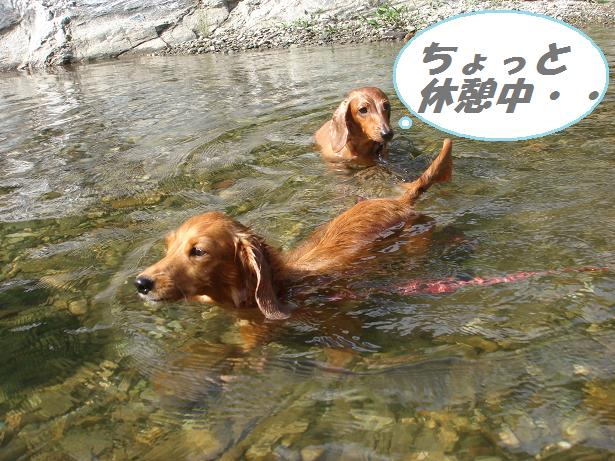 川遊び  7