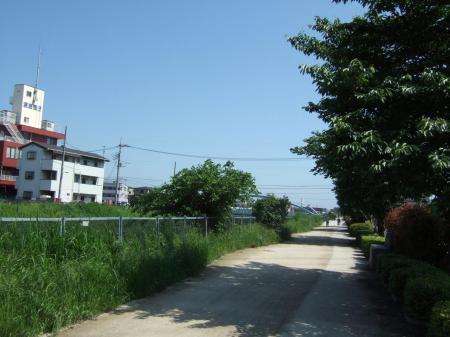 2006_05200002.jpg