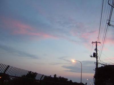 2006_08060033.jpg