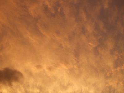 2006_08080167.jpg