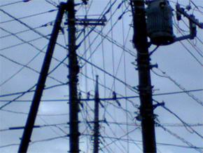 今日の電線