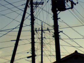 10月2日の電線