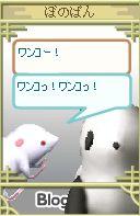 20060915141757.jpg