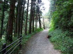 この山道を抜けると…。