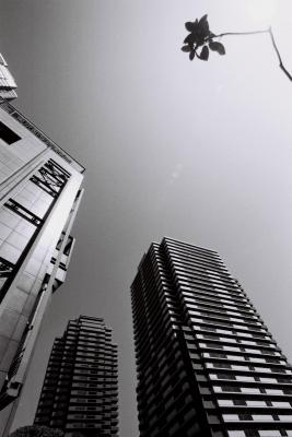 東京都写真美術館2