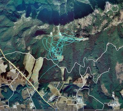 20080330-1.jpg