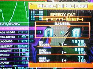 DP SPEEDY CAT -ANOTHER-