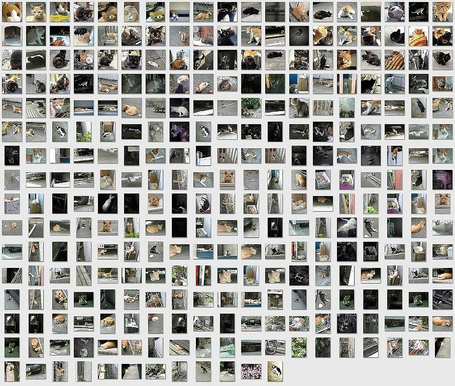 s-collage1.jpg