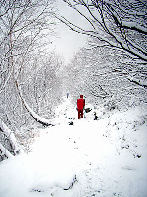 karasawa_snow2.jpg