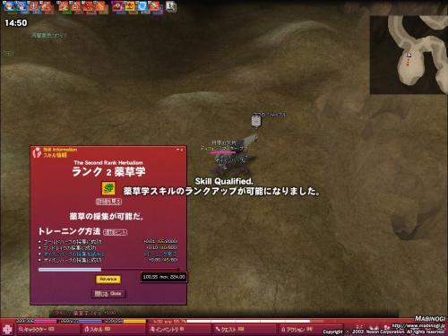 2008110603.jpg