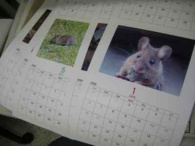 Sさんのカレンダー・・自主作品です。