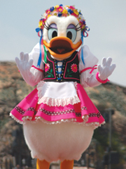 20070321_daisy.jpg