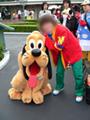 アフォ管理人と忠犬
