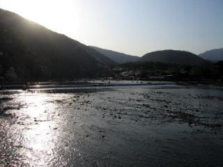 20050409_arashiyama-01.jpg