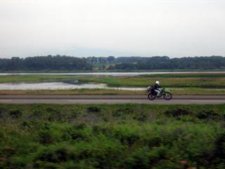20050814_koshimizu_genseikaen.jpg