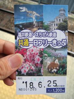 20060625_1day_free_ticket-01.jpg