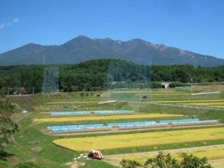 20061009_koumi_line-01.jpg