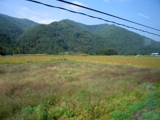 20061014_chuo_west-03.jpg