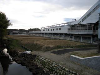 20061203_yakusa-09.jpg