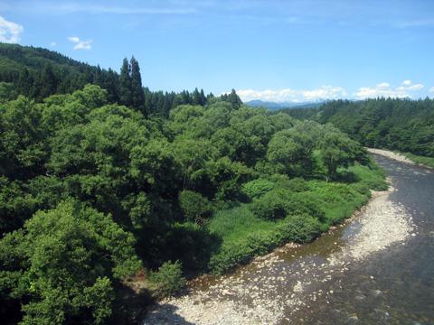 20070617_yonesaka_line-04.jpg