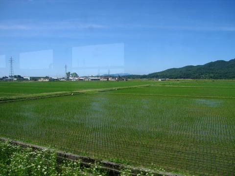 20070617_yonesaka_line-06.jpg