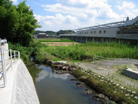 20070722_yakusa-06.jpg