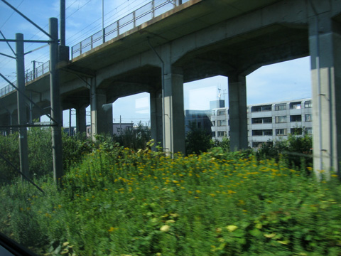 20070813_okhotsk4-15.jpg