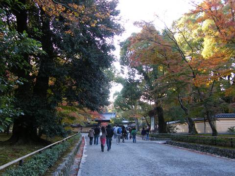 20071118_kinkakuji-01.jpg