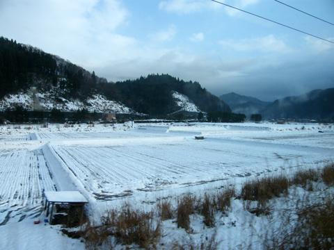 20071124_kamoshika4-04.jpg