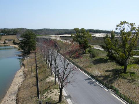 20080406_moricoro_park-31.jpg