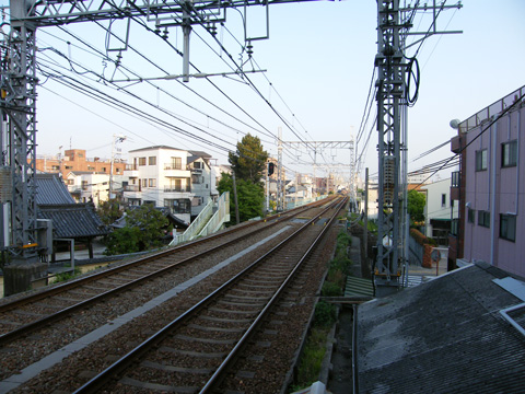 20080429_denpo-01.jpg
