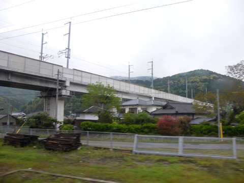 20080505_hisatsu_orange-06.jpg