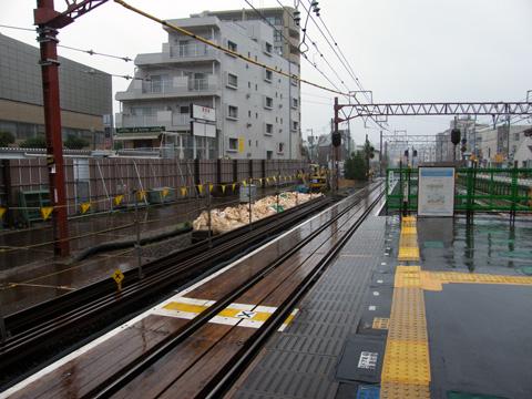 20080629_shakujiikoen-02.jpg