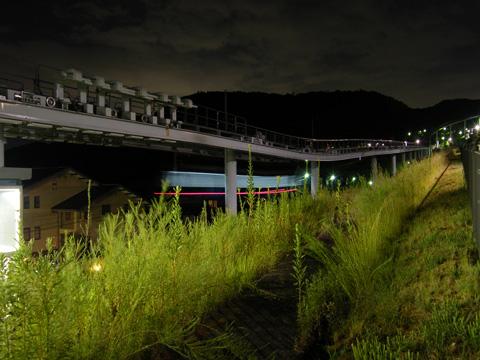 20080814_midori_nakamachi-03.jpg