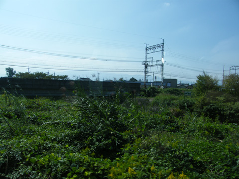 20081013_yamato_yagi-01.jpg