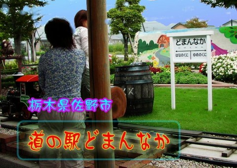 file_20081026T092246547.jpg