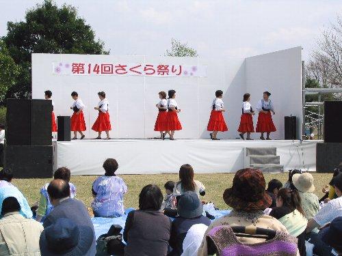 0006_sakura