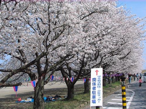 yuusui0641